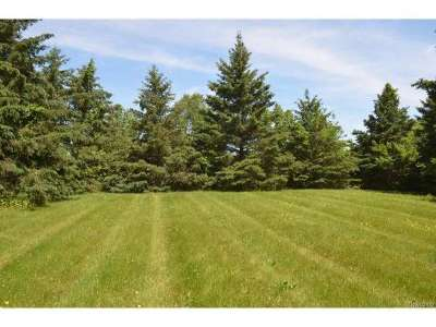 Whitmore Lake MI Residential Lots & Land For Sale: $160,000