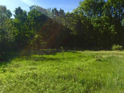 Manchester MI Residential Lots & Land For Sale: $100,000