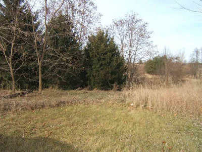 Manchester MI Residential Lots & Land For Sale: $79,000