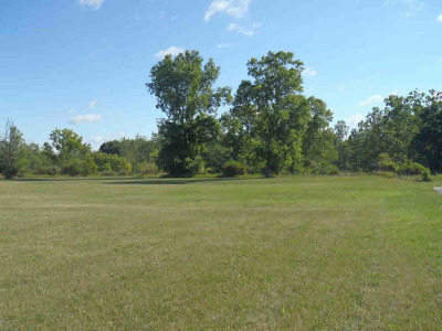 Hillsdale County Residential Lots & Land For Sale: 3003 W Carleton Rd