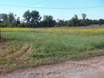 Pittsford MI Residential Lots & Land For Sale: $168,000