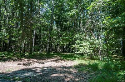 Manchester MI Residential Lots & Land For Sale: $95,500