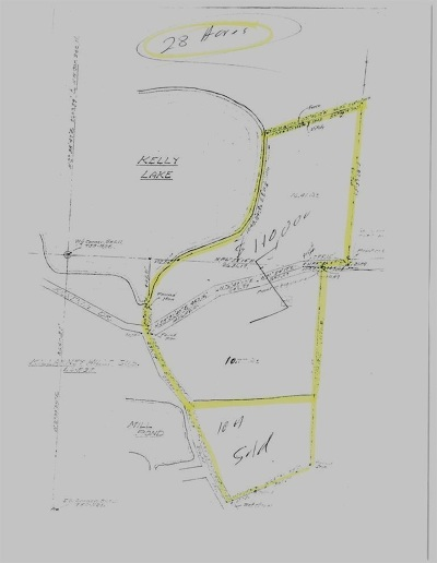 Onsted MI Residential Lots & Land For Sale: $260,000