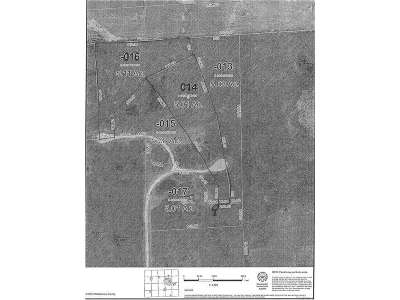 Ann Arbor MI Residential Lots & Land For Sale: $170,000