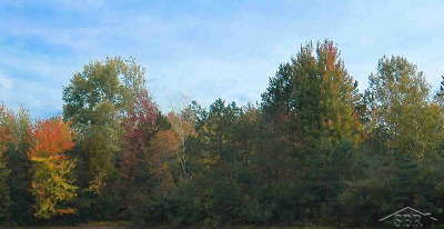Residential Lots & Land For Sale: W Townline Rd 16