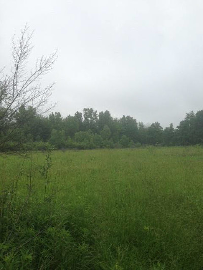 Dexter MI Residential Lots & Land For Sale: $157,500