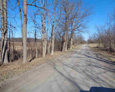 Clinton MI Residential Lots & Land For Sale: $85,000