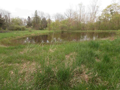Plymouth MI Residential Lots & Land For Sale: $340,000