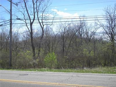Ypsilanti MI Residential Lots & Land For Sale: $450,000