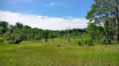 Dexter MI Residential Lots & Land For Sale: $175,000