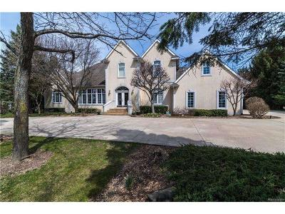 silver lake jackson mi homes for sale 5177455443