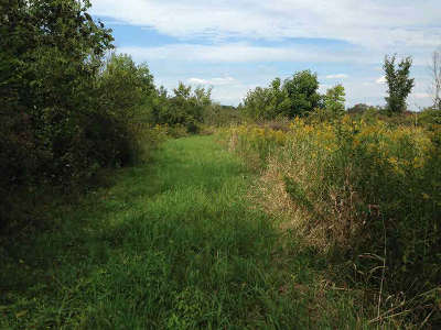 Ypsilanti MI Residential Lots & Land For Sale: $399,000