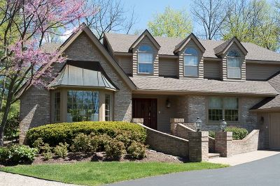 Washtenaw County Single Family Home For Sale: 3809 Michael Rd.