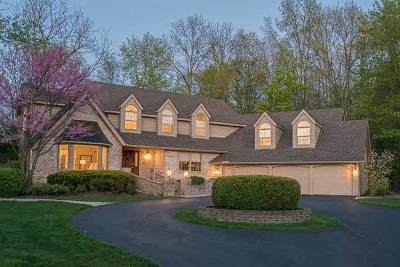 Washtenaw County Single Family Home For Sale: 3809 S Michael Rd