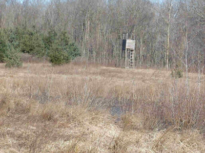 Waldron MI Residential Lots & Land For Sale: $138,750