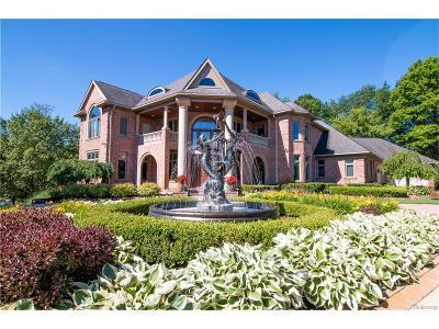 Washtenaw County Single Family Home For Sale: 9231 Ann Arbor Rd W