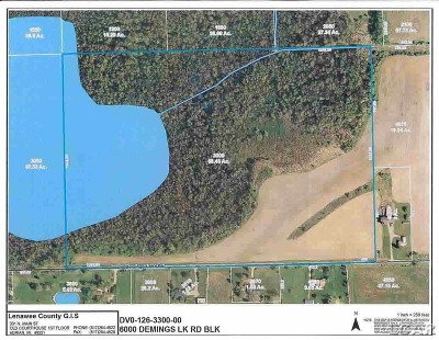 Clayton MI Residential Lots & Land For Sale: $174,900