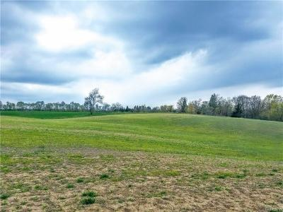 Northville MI Residential Lots & Land For Sale: $1,700,000