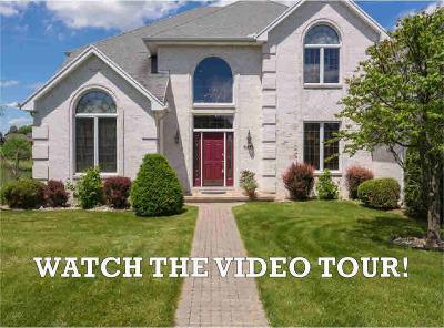 Washtenaw County Single Family Home For Sale: 9433 Sunset Lake