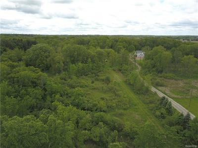 Whitmore Lake MI Residential Lots & Land For Sale: $155,000