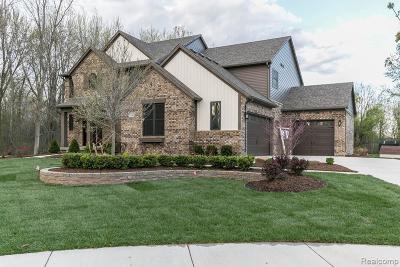 Dexter Single Family Home For Sale: 7132 Ridgeline Cir
