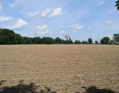Dexter MI Residential Lots & Land For Sale: $125,000