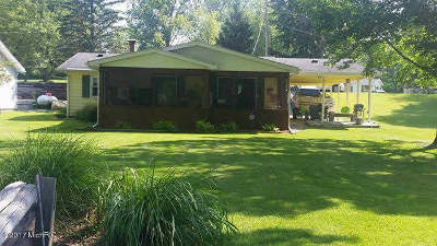 Reading MI Single Family Home For Sale: $124,900