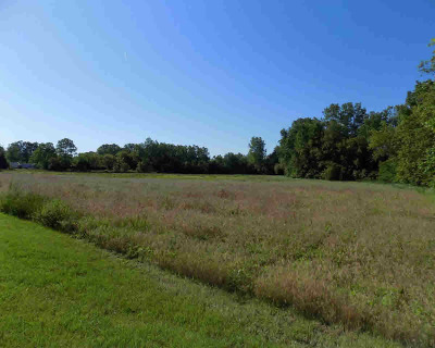 Willis MI Residential Lots & Land For Sale: $325,000