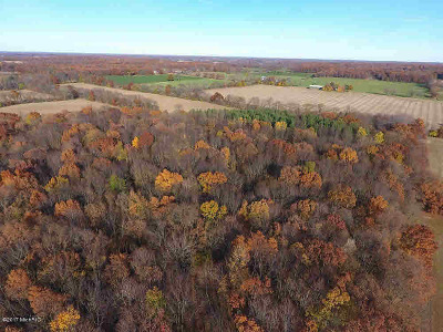 Hanover MI Residential Lots & Land For Sale: $275,000