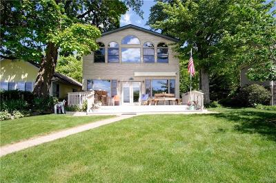 Gregory MI Single Family Home For Sale: $550,000