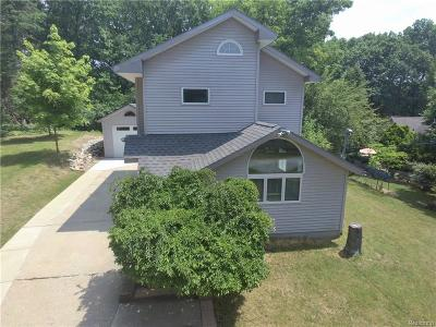 Jackson County, Hillsdale County, Lenawee County, Washtenaw County Single Family Home For Sale: 9208 Thumm