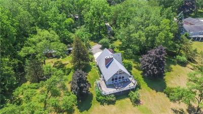 Gregory MI Single Family Home For Sale: $675,000