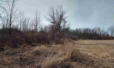 MI Residential Lots & Land For Sale: $32,500