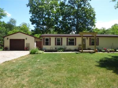 Whitmore Lake MI Single Family Home For Sale: $164,900