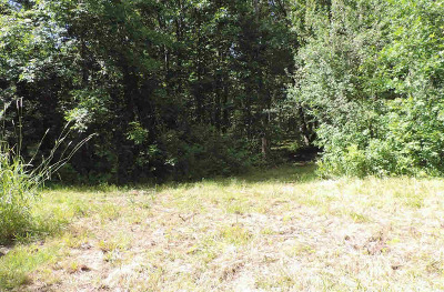 Manchester MI Residential Lots & Land For Sale: $299,900