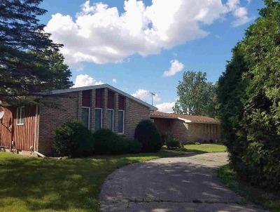 Britton MI Single Family Home For Sale: $239,500