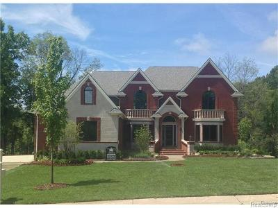 Canton Single Family Home For Sale: 8214 Chatham