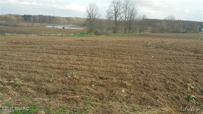 Hillsdale MI Residential Lots & Land For Sale: $249,900