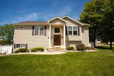 Onsted MI Single Family Home For Sale: $334,900