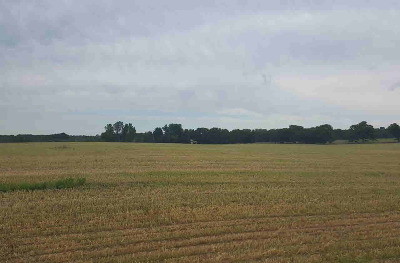 Grass Lake MI Residential Lots & Land For Sale: $103,324