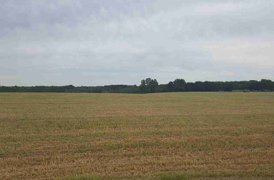 Grass Lake MI Residential Lots & Land For Sale: $106,392