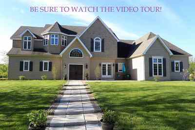 Jackson County, Lenawee County, Hillsdale County Single Family Home For Sale: 9386 Britton