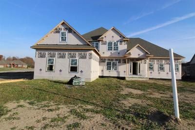Washtenaw County Single Family Home For Sale: 5279 Crown Ct