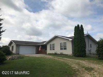 Allen MI Single Family Home For Sale: $275,000