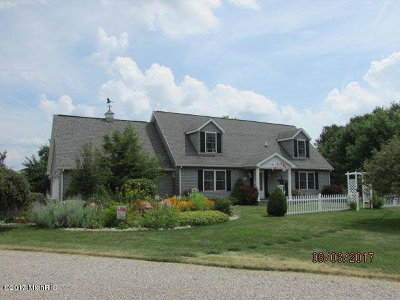 Hillsdale MI Single Family Home For Sale: $299,500