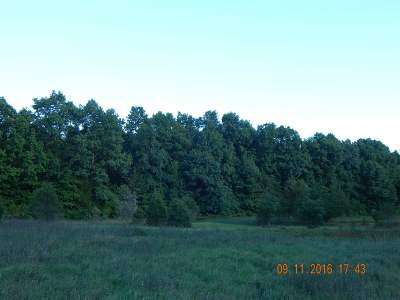 Napoleon MI Residential Lots & Land For Sale: $164,900