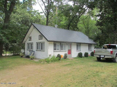 Reading MI Single Family Home For Sale: $149,999