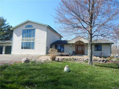 Northville Single Family Home For Sale: 6277 Six Mile Road