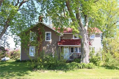 Single Family Home For Sale: 5472 E Gorman Rd