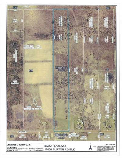 Manitou Beach MI Residential Lots & Land For Sale: $85,000